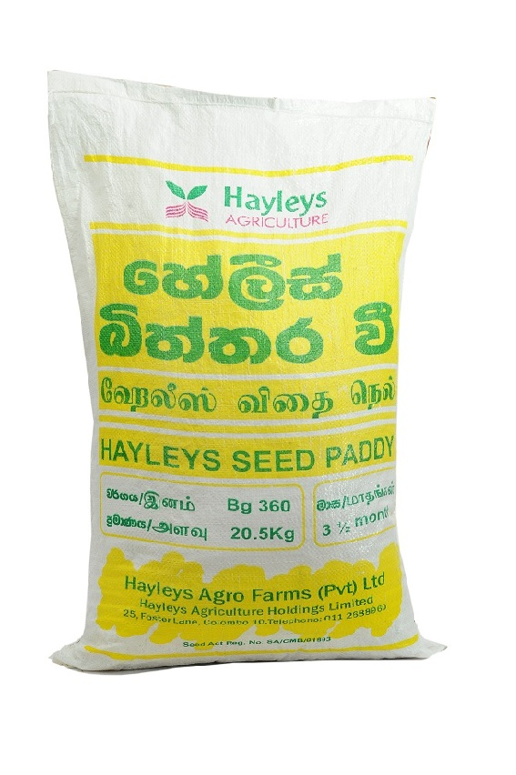 Paddy Seeds